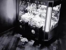 """英国一酒吧内毛绒玩具深夜""""逃离""""娃娃机"""