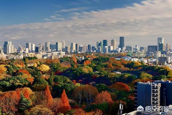 都说日本好?好在哪里?小编带你看日本占据了多少个世界之最?