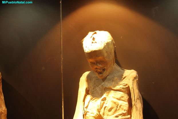 Photos of Mummies干尸