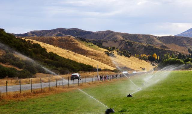 奇风异俗:新西兰南岛上的乳罩墙,司机到这儿都容易走神儿!