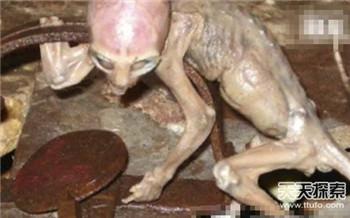 外星人现身 罕见尸体曝光