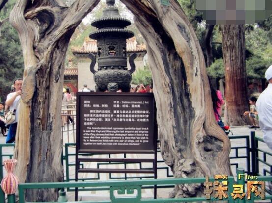 故宫哪几个地方最可怕,寿康宫是名副其实猛鬼屋(吓破胆)