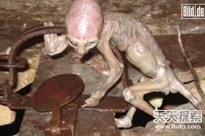 外星人存在?37张照片曝惊人真相