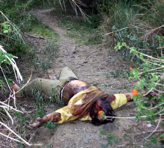 一组死人尸体照片,逝者安息.